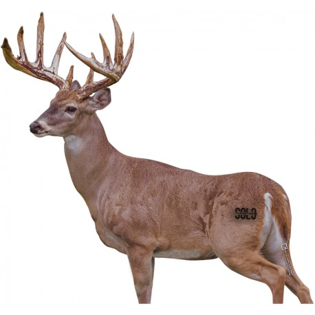 SOLO SKIN WHITETAIL DEER BROADSIDE